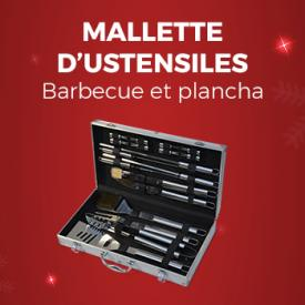 "<img src=""https://api.alicesgarden.solutions/uploads/category/tab/fr_FR/ONGLET-OP-IDEES-CADEAUX.jpg"" alt=""Idées Cadeaux"" title=""Idées Cadeaux"">                                                                                                                                                      - Mallette d'ustensiles pour barbecue et plancha - 18 pièces"